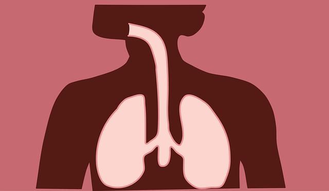 respiratory_1
