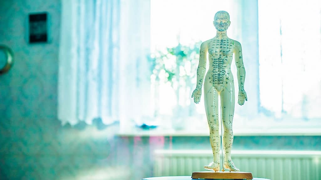 TCM Internal Medicine