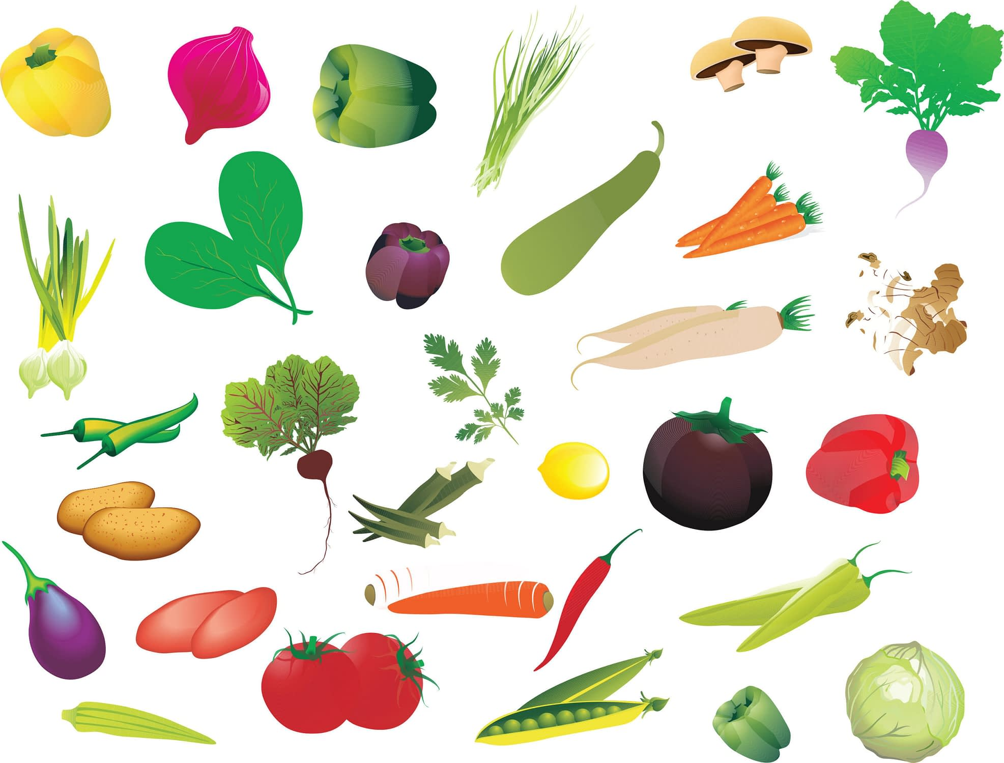 fresh-vegetables-scaled.jpg